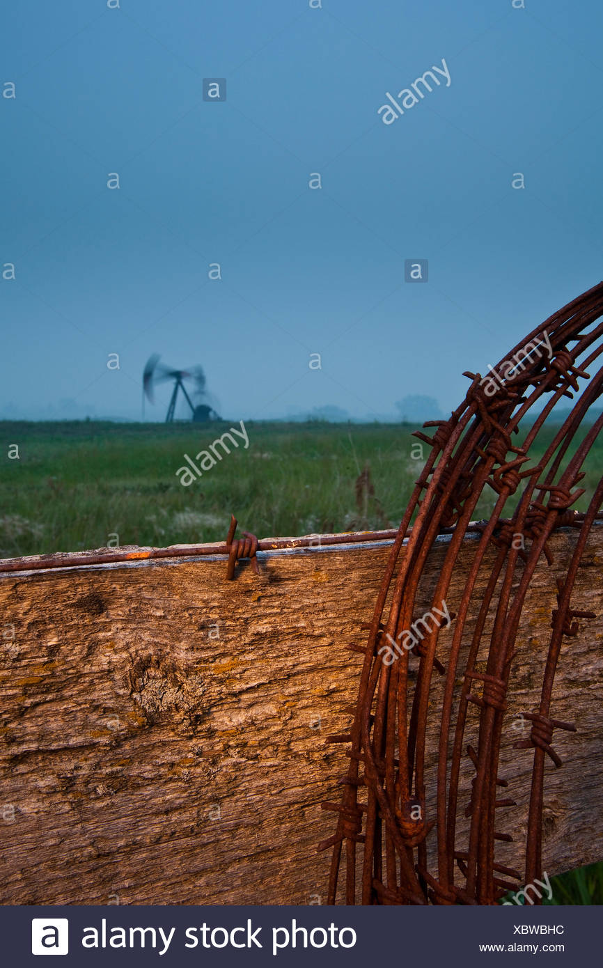 Barbed wire on fence post with pumpjack in background at dusk, Alberta, Canada - Stock Image