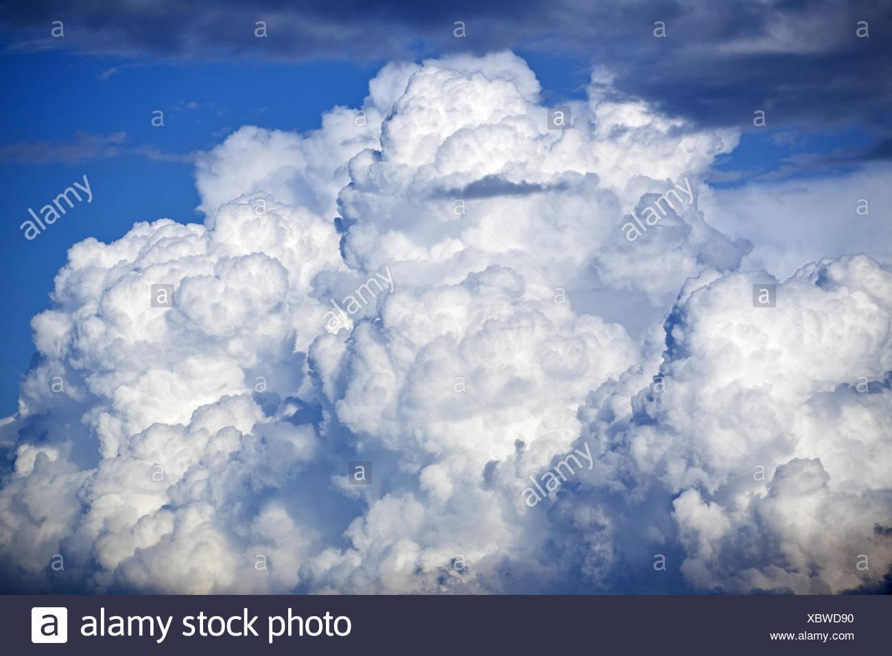 big thunder cloud and blue sky - Stock Image