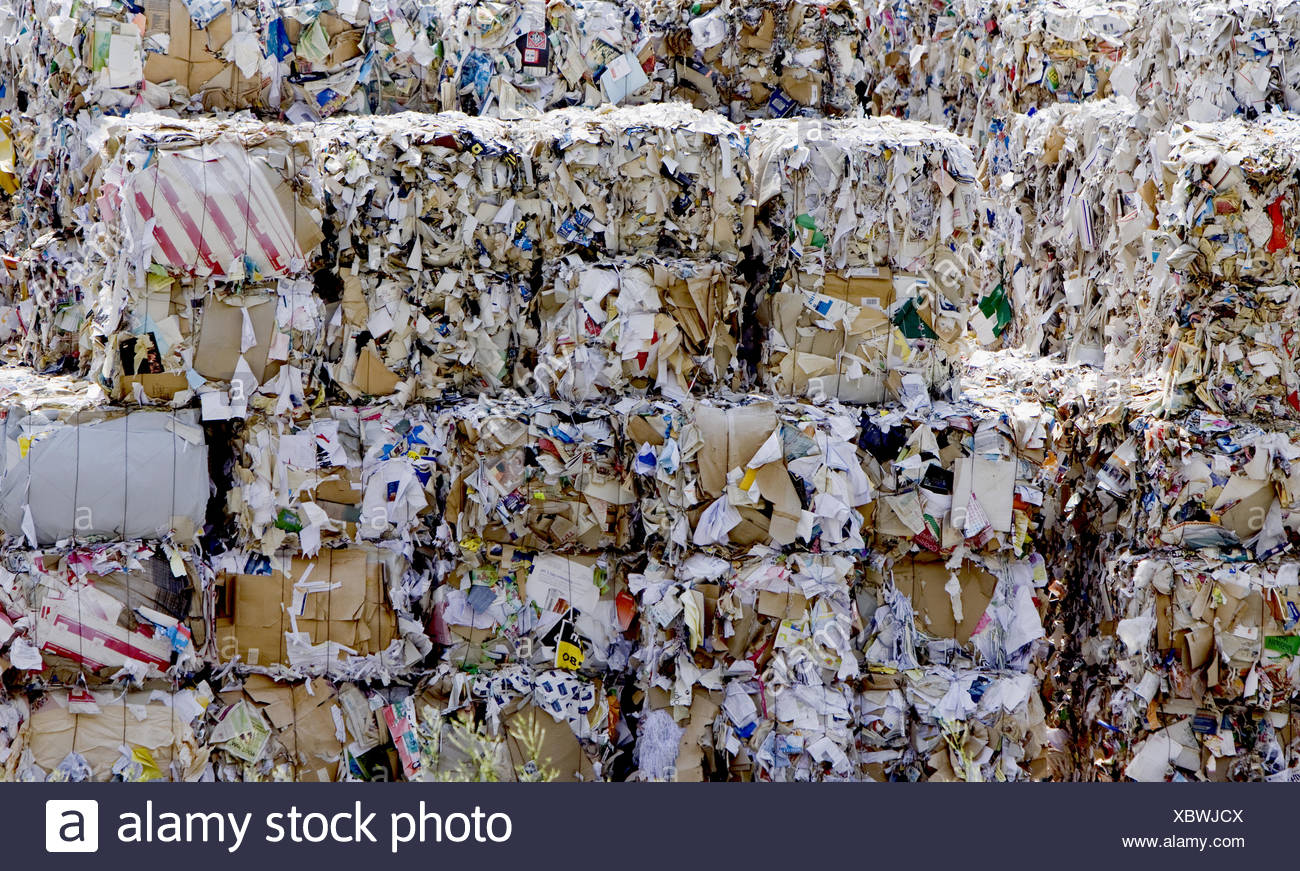 wastepaper - Stock Image