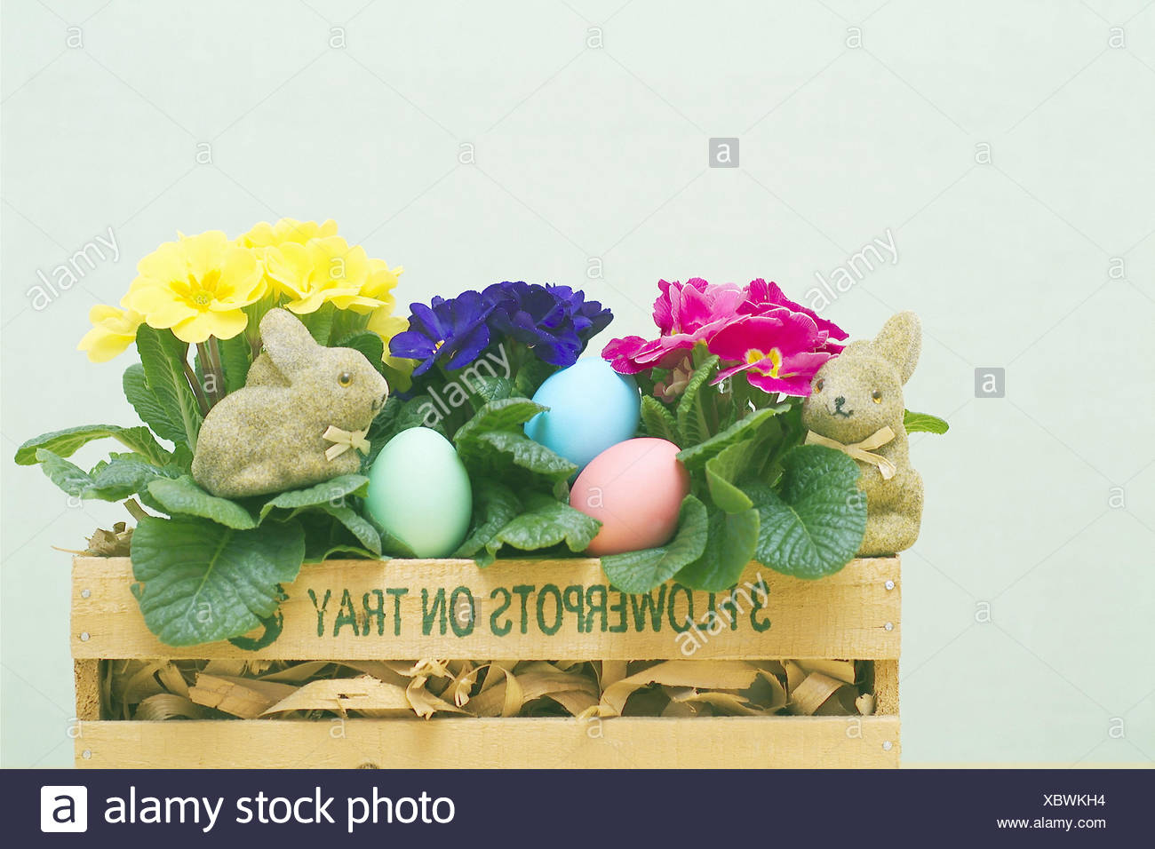 Wooden Box Primroses Easter Eggs Hares Figures Curled Flower
