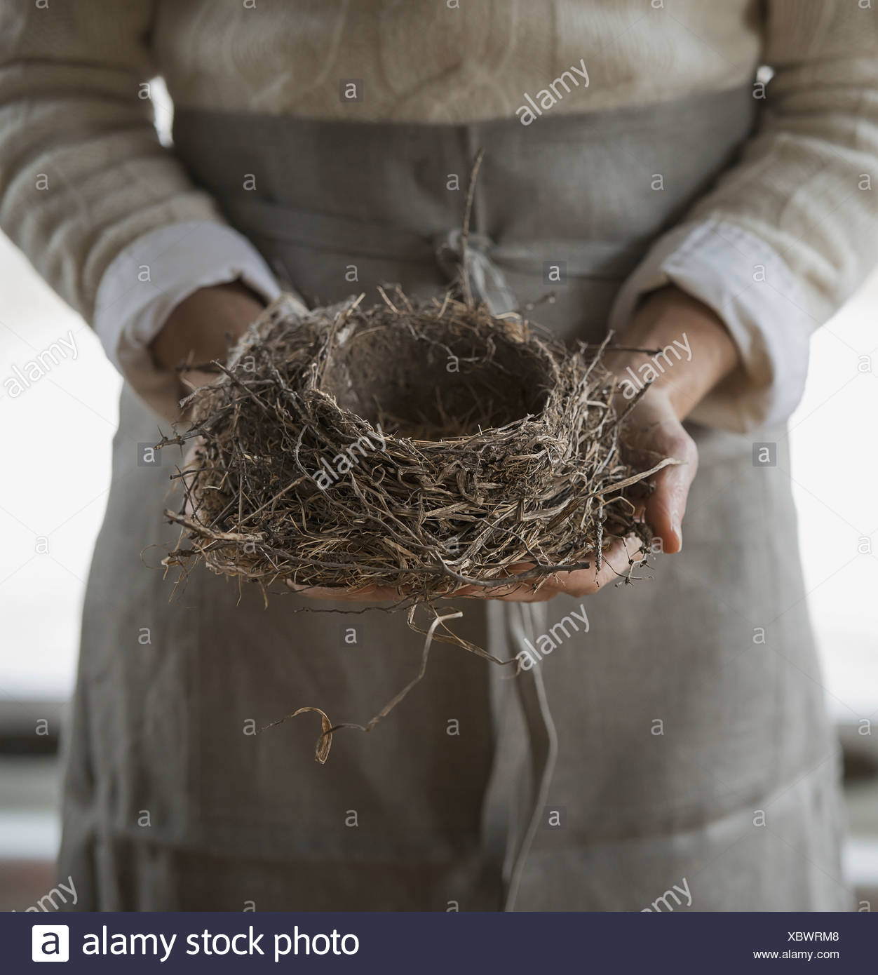 An organic farm in winter in New York State USA A woman in a work apron holding a woven twig bird nest - Stock Image