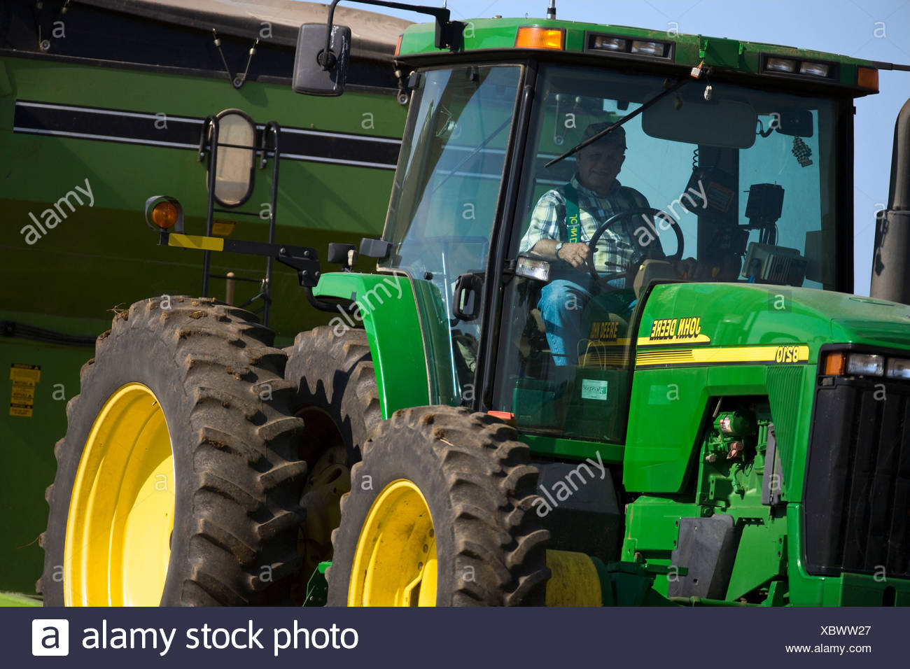 An elderly farmer sits in the cab of a tractor during the Autumn soybean harvest / near Northland, Minnesota, USA. - Stock Image