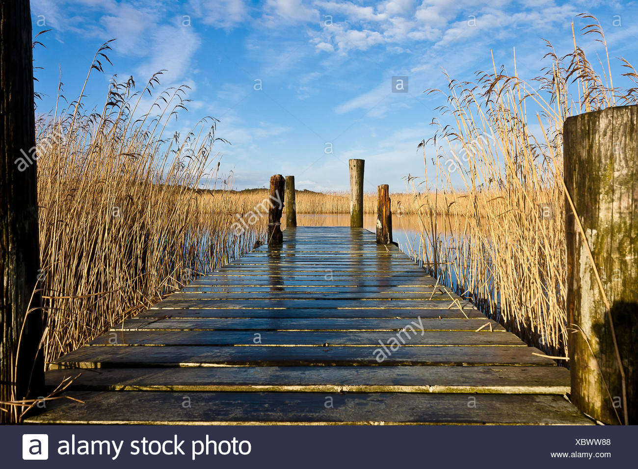 A pier at a lake near Norre Nebel - Stock Image