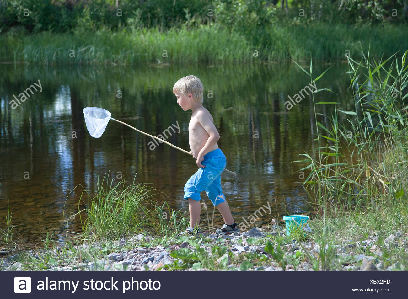 A boy playing with a butterfly-net, Sweden. - Stock Image