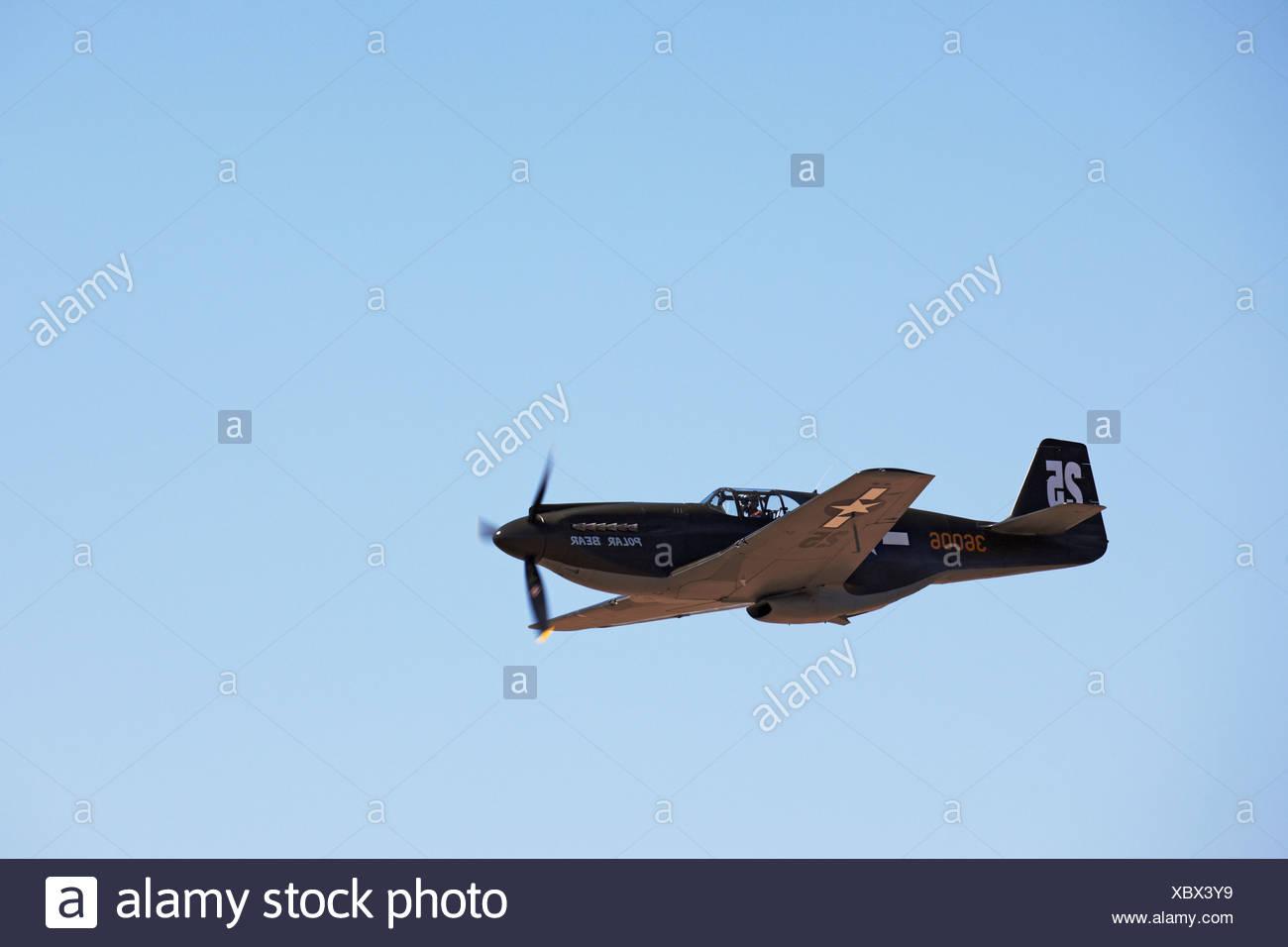 North American P-51 Mustang - Stock Image
