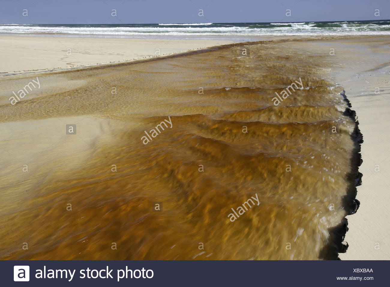 Tannin water from a creek flowing into the ocean in the southern part of the island,  Fraser Island, Australia. Stock Photo
