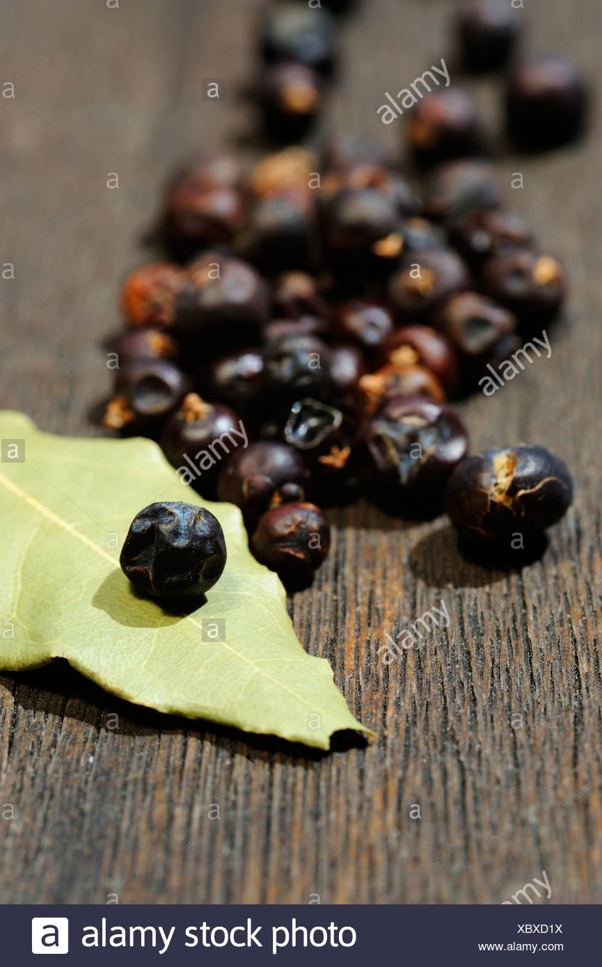 Dried juniper berries and bay leaf Stock Photo