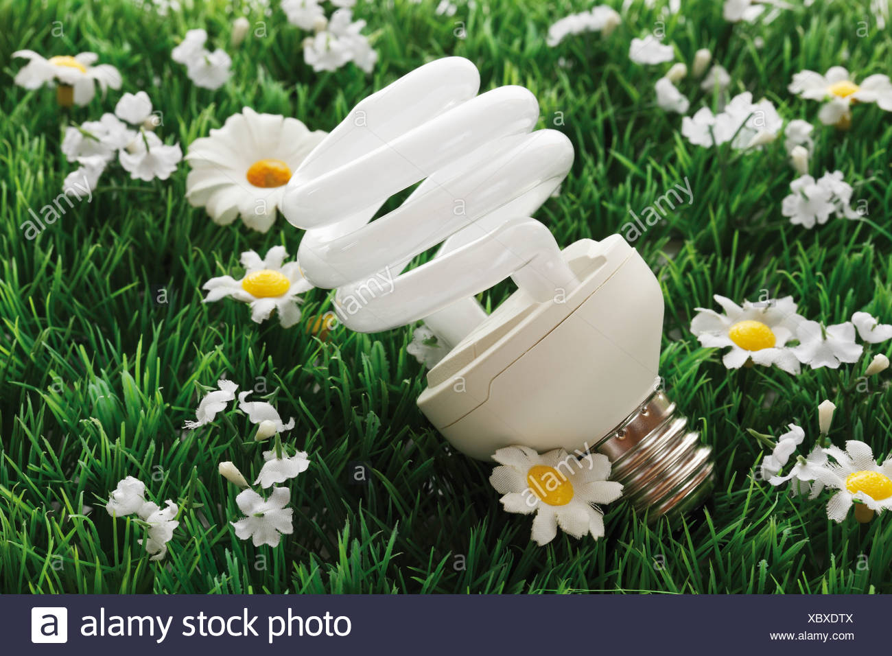 Energy saving lightbulb on synthetic turf, close-up - Stock Image
