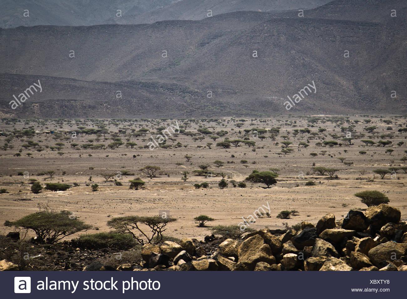 Djibouti landscape - Stock Image