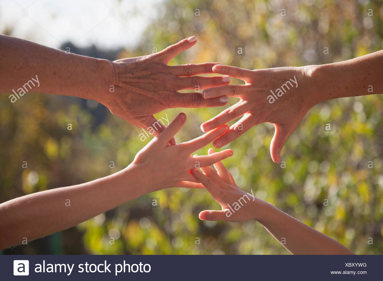Close up of a family hands together against sunlight, Bavaria, Germany - Stock Image
