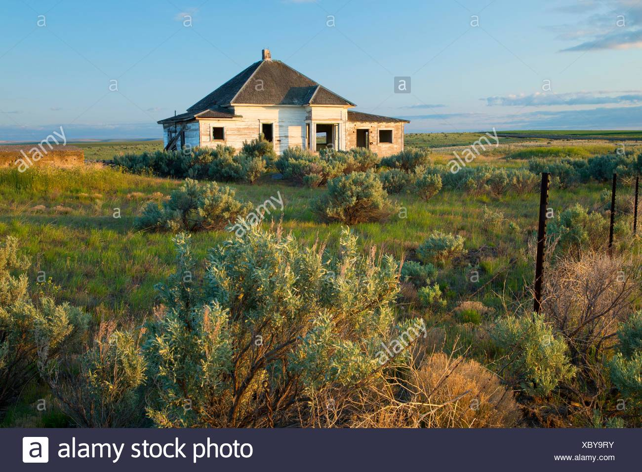 Abandoned homestead, Gilliam County, Oregon. - Stock Image