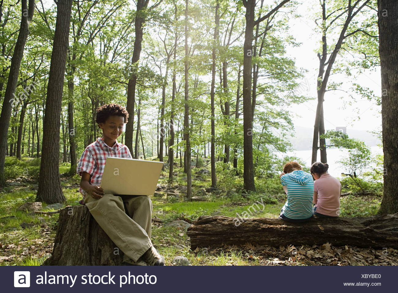 Boy using a laptop in a forest - Stock Image