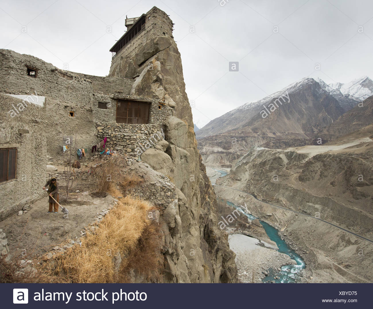 Below the Altit fort and above the Hunza river, a woman tends to her potato field. - Stock Image