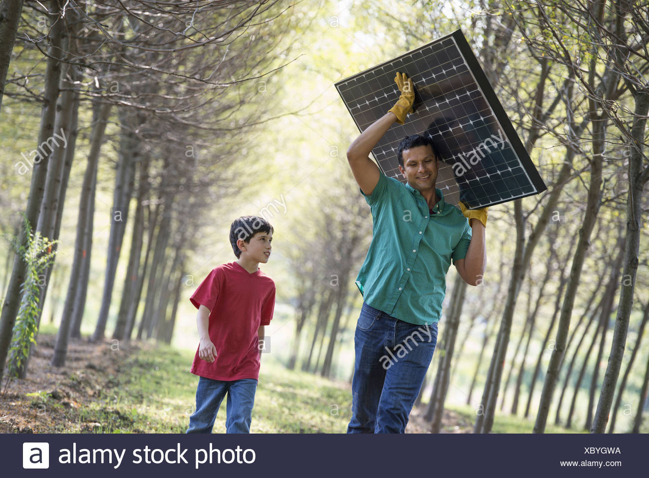A man carrying a solar panel down an avenue of trees accompanied by a child. - Stock Image