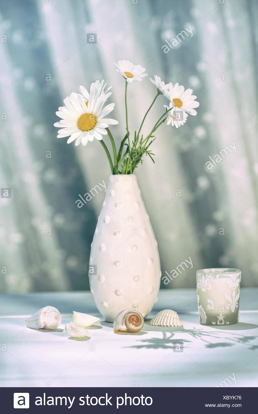 Yellow daisies in vase stock photos yellow daisies in vase stock summer daisies in vase on table stock image reviewsmspy