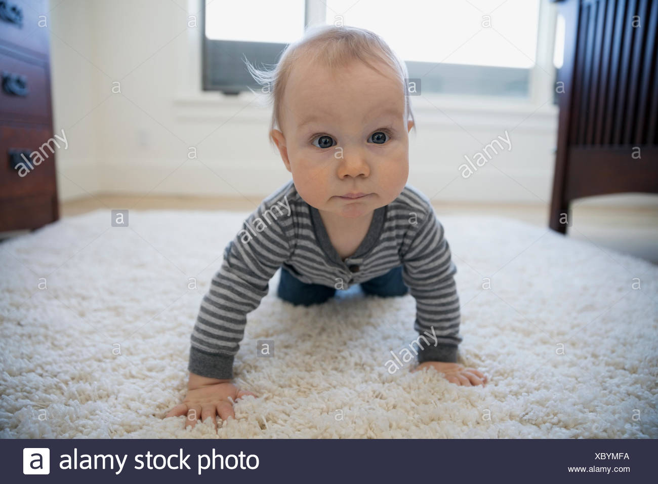 Portrait curious boy crawling on shag rug - Stock Image