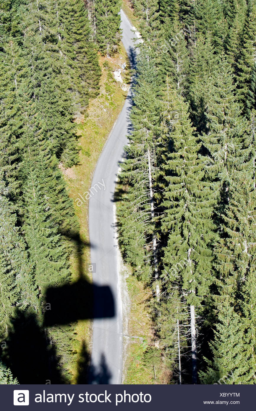 Germany, Bavaria, Coniferous forest along highway, aerial view - Stock Image