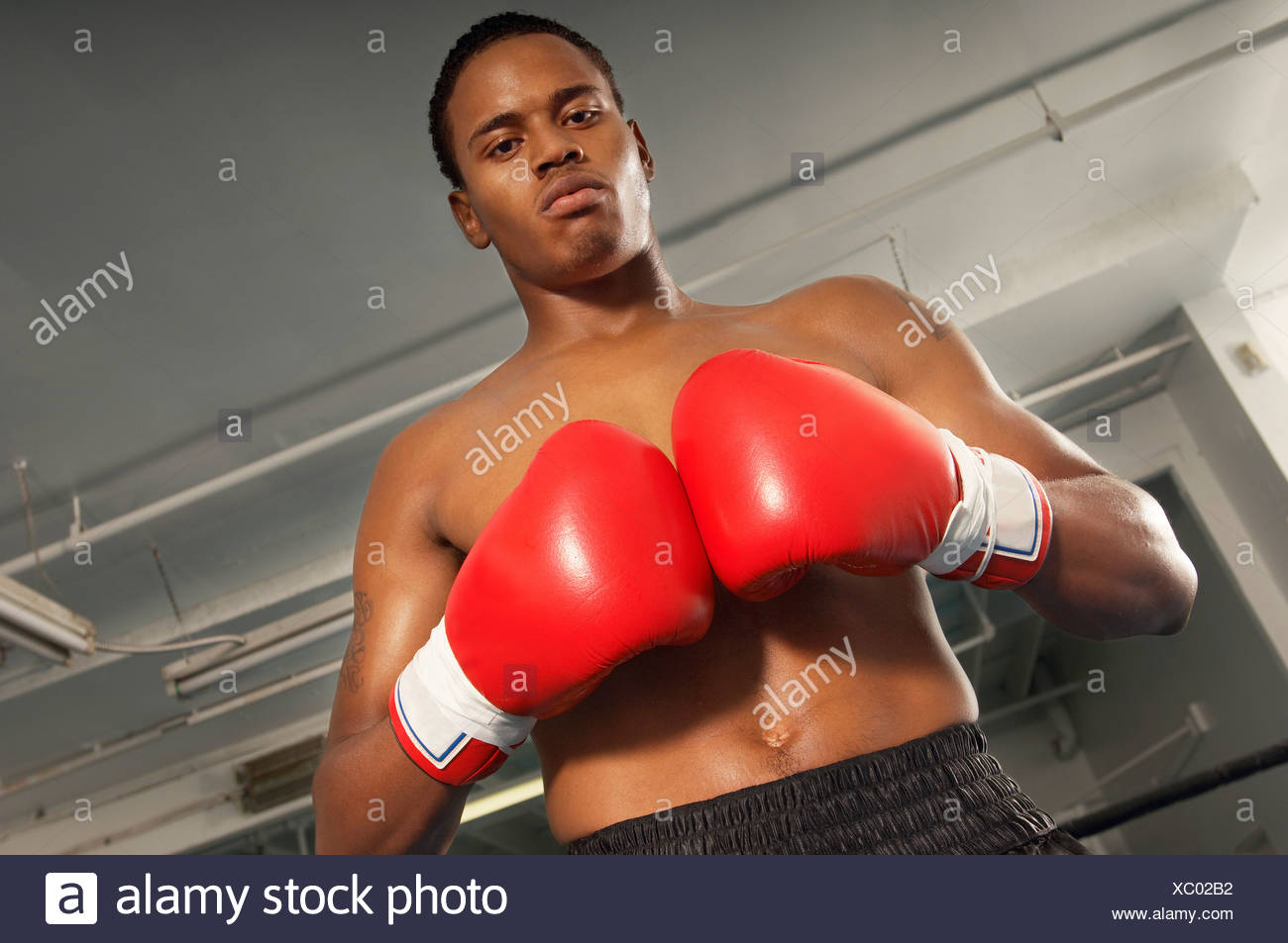 Boxer with red boxing gloves in gym, half length - Stock Image