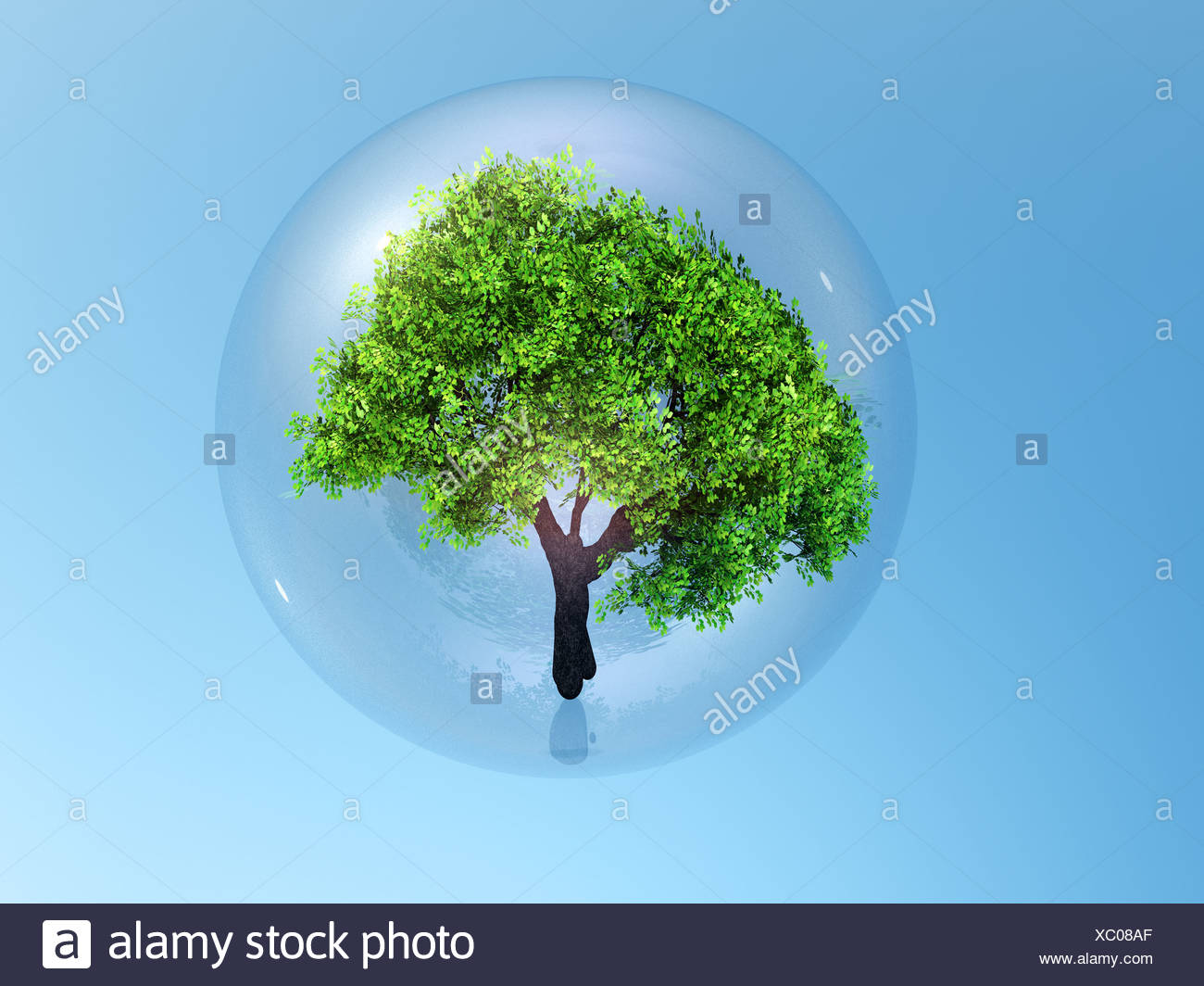 3 d illustration,a tree in  bubble - Stock Image