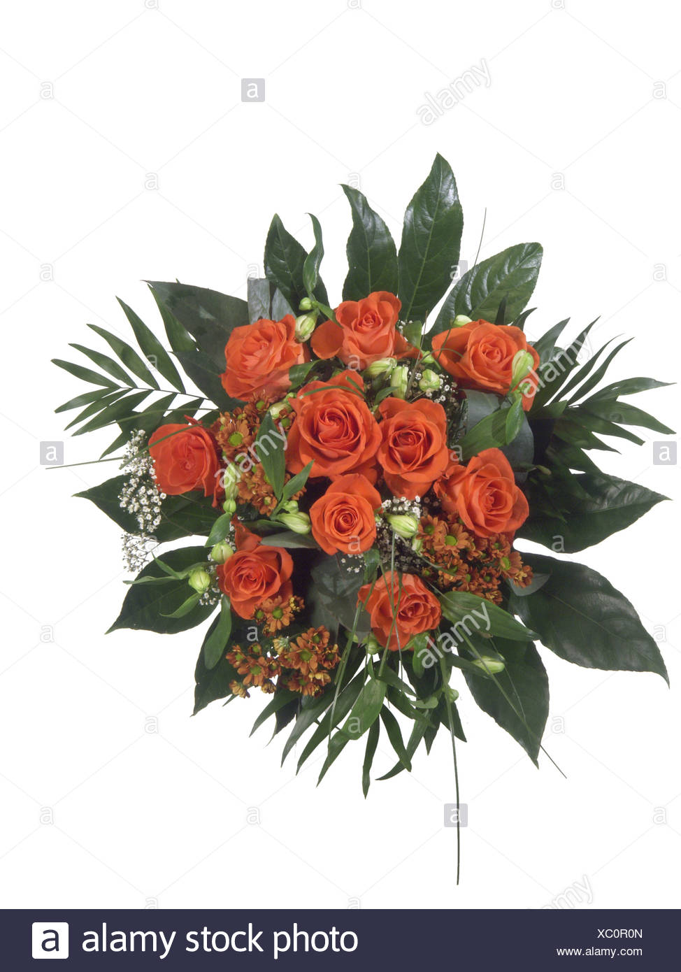 birthday present presents gift gifts bouquet bunch flowers stock