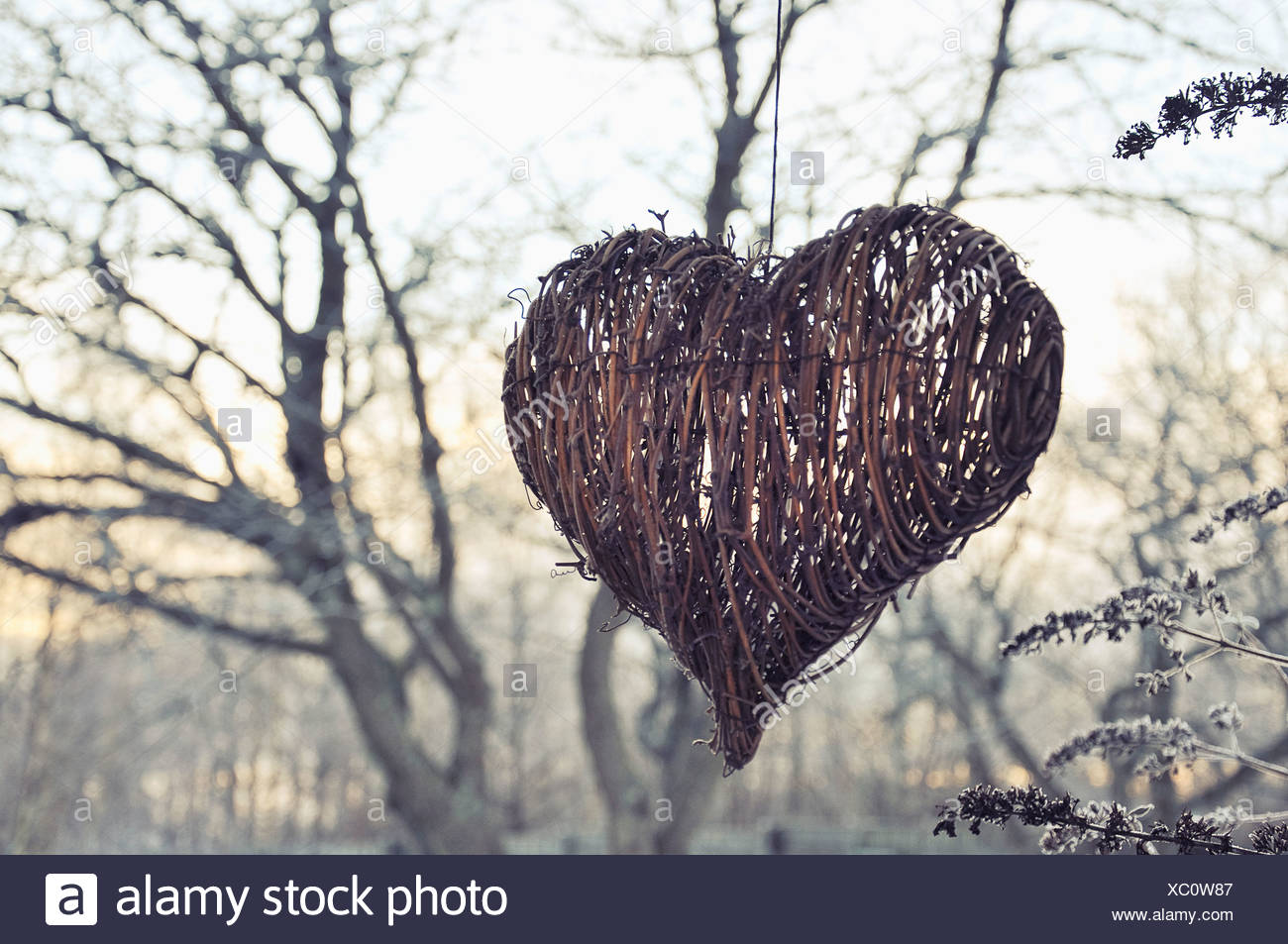 Heart shape Christmas decoration outdoors - Stock Image