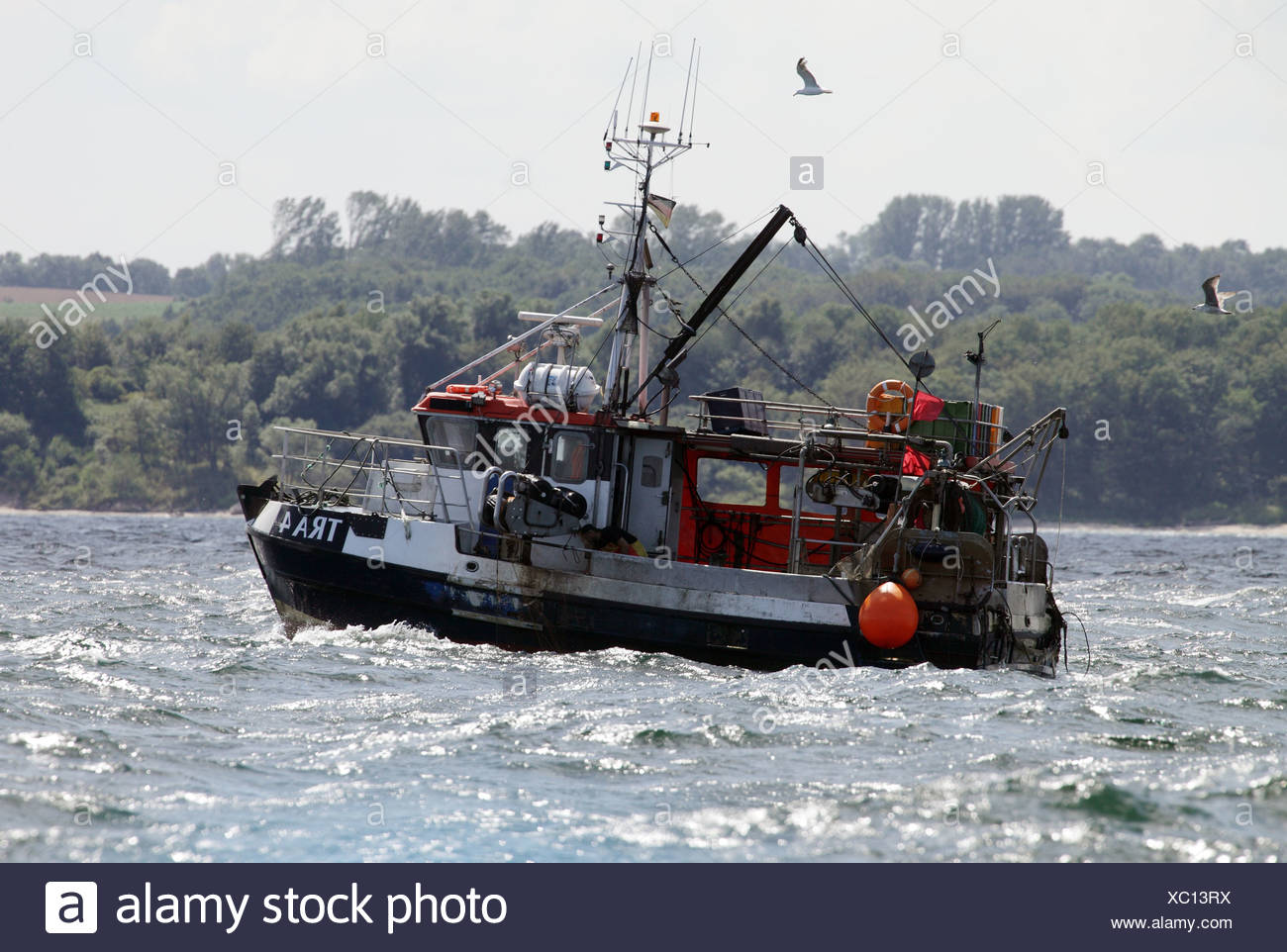 Wismar, Germany, a fishing boat on the Baltic Sea - Stock Image