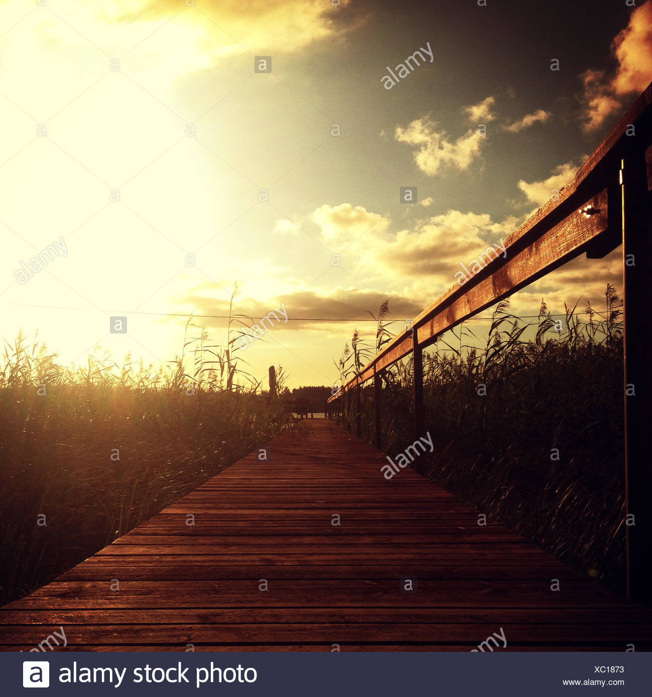 Wooden pier - Stock Image