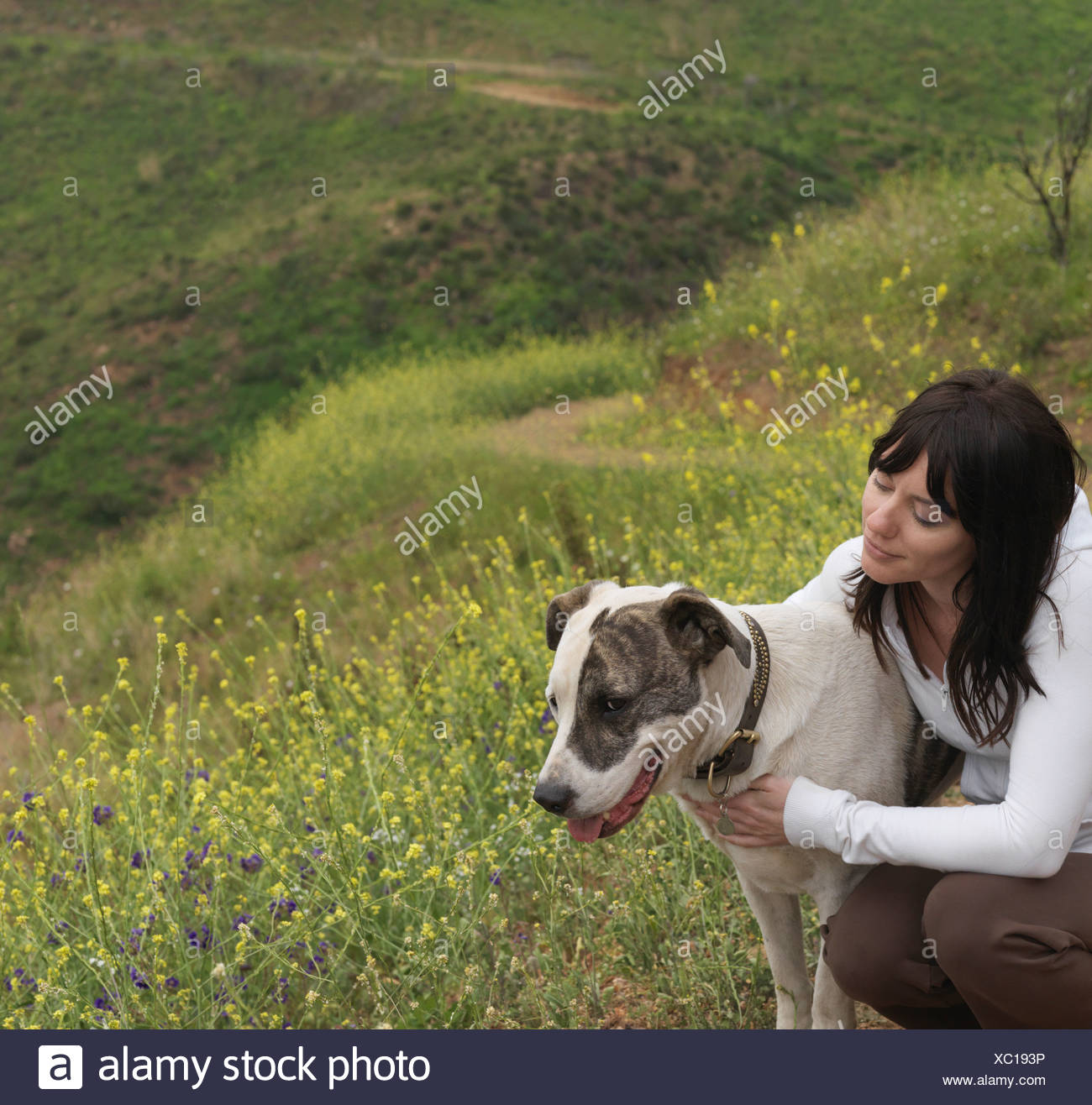 Woman hugging dog on nature trail Stock Photo