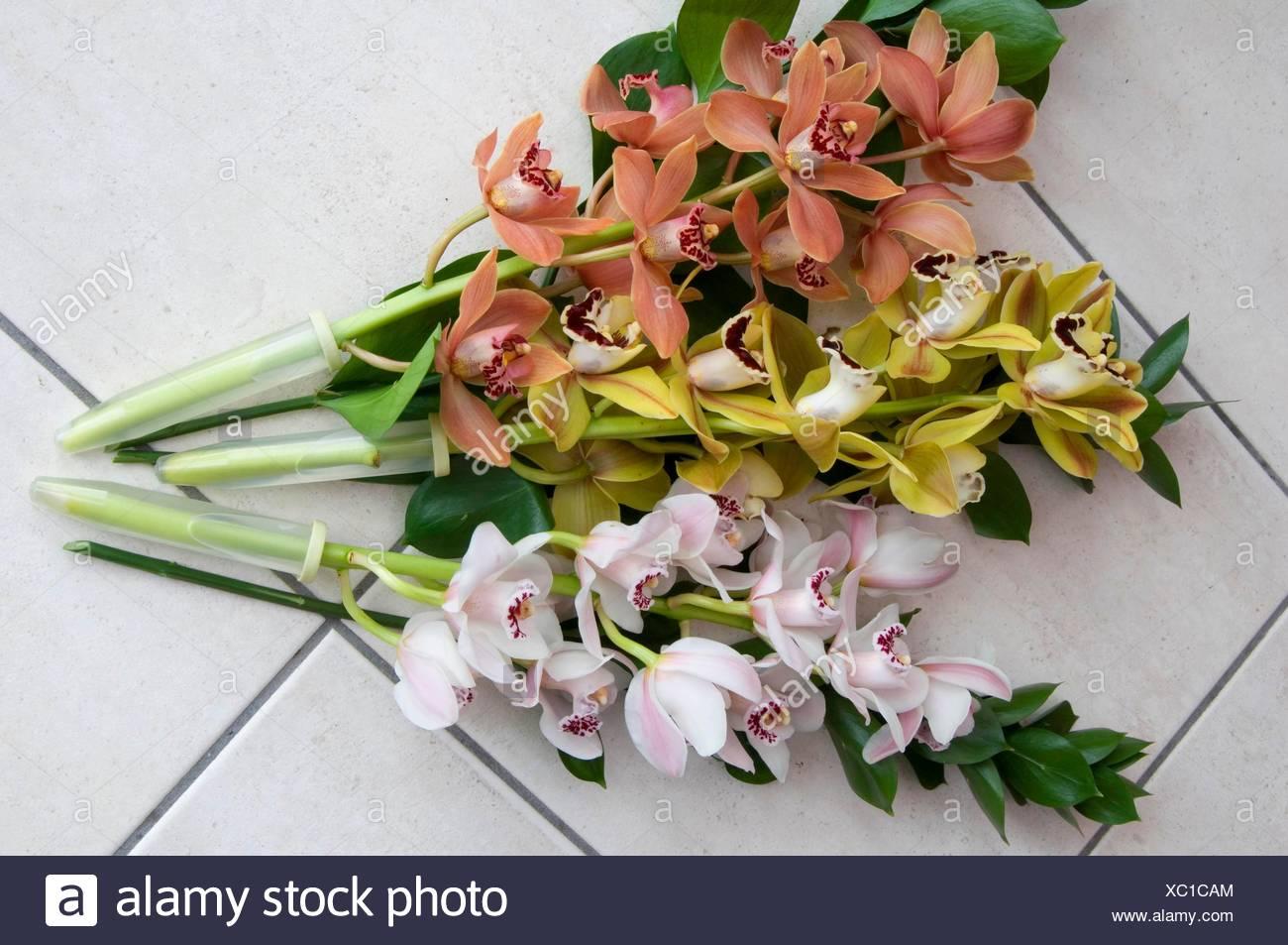 Flower arrangementcut flowers cymbidium orchids with their own flower arrangementcut flowers cymbidium orchids with their own water resevoirs miw253205 p izmirmasajfo