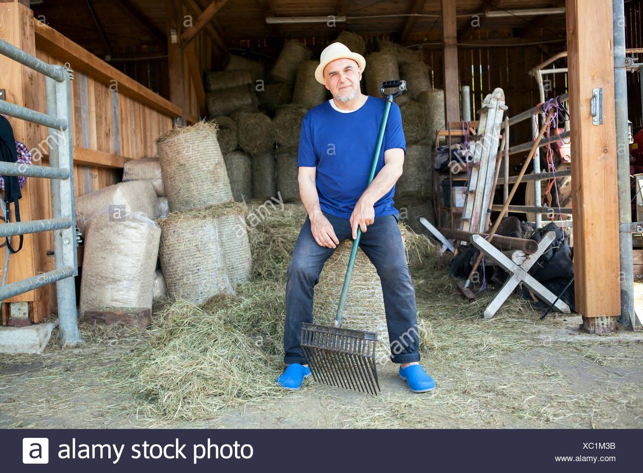 Senior man in stable taking a break - Stock Image
