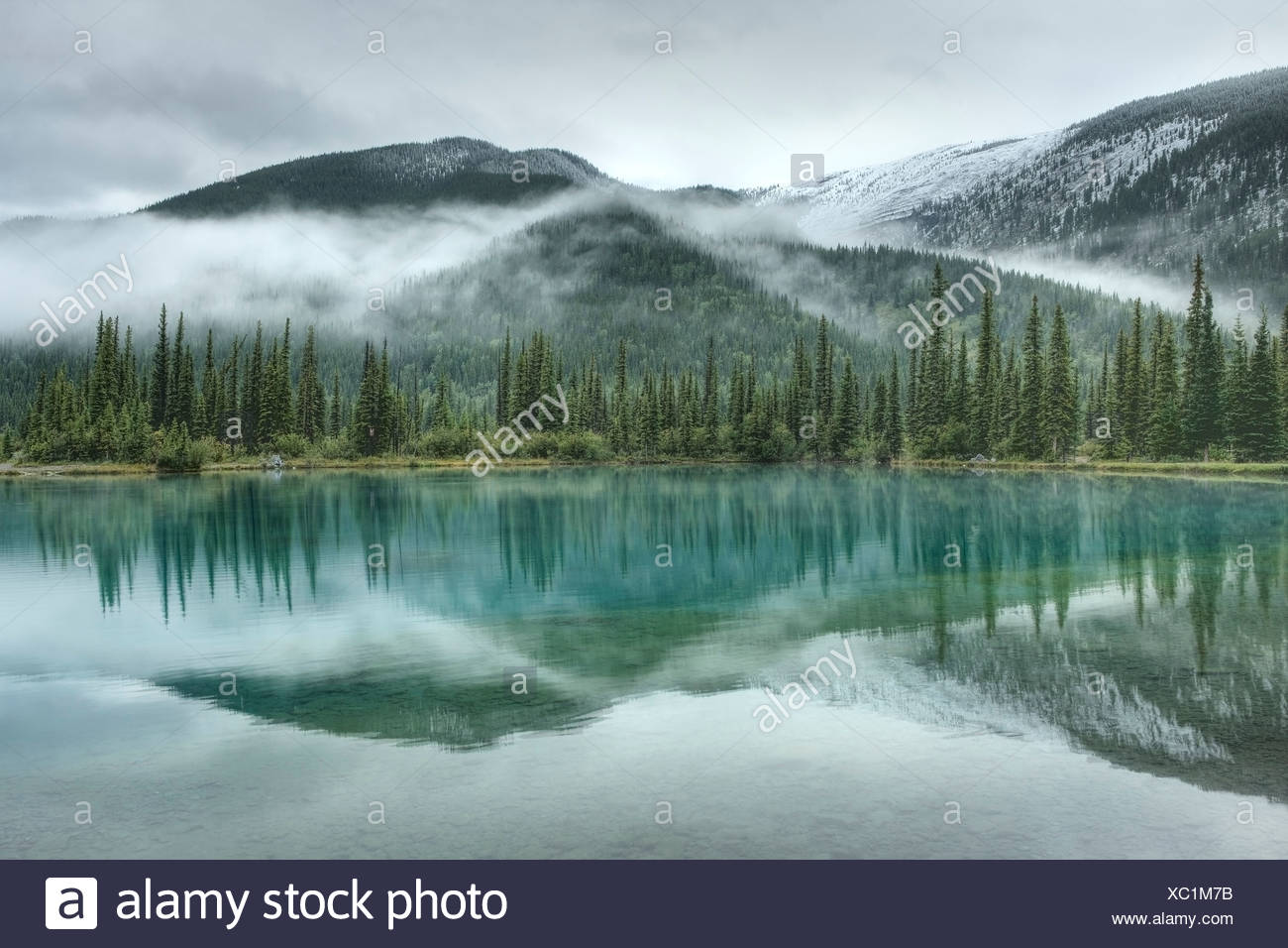 Forget-Me-Not Pond, Elbow Valley, Kananaskis Country, Alberta, Canada Stock Photo