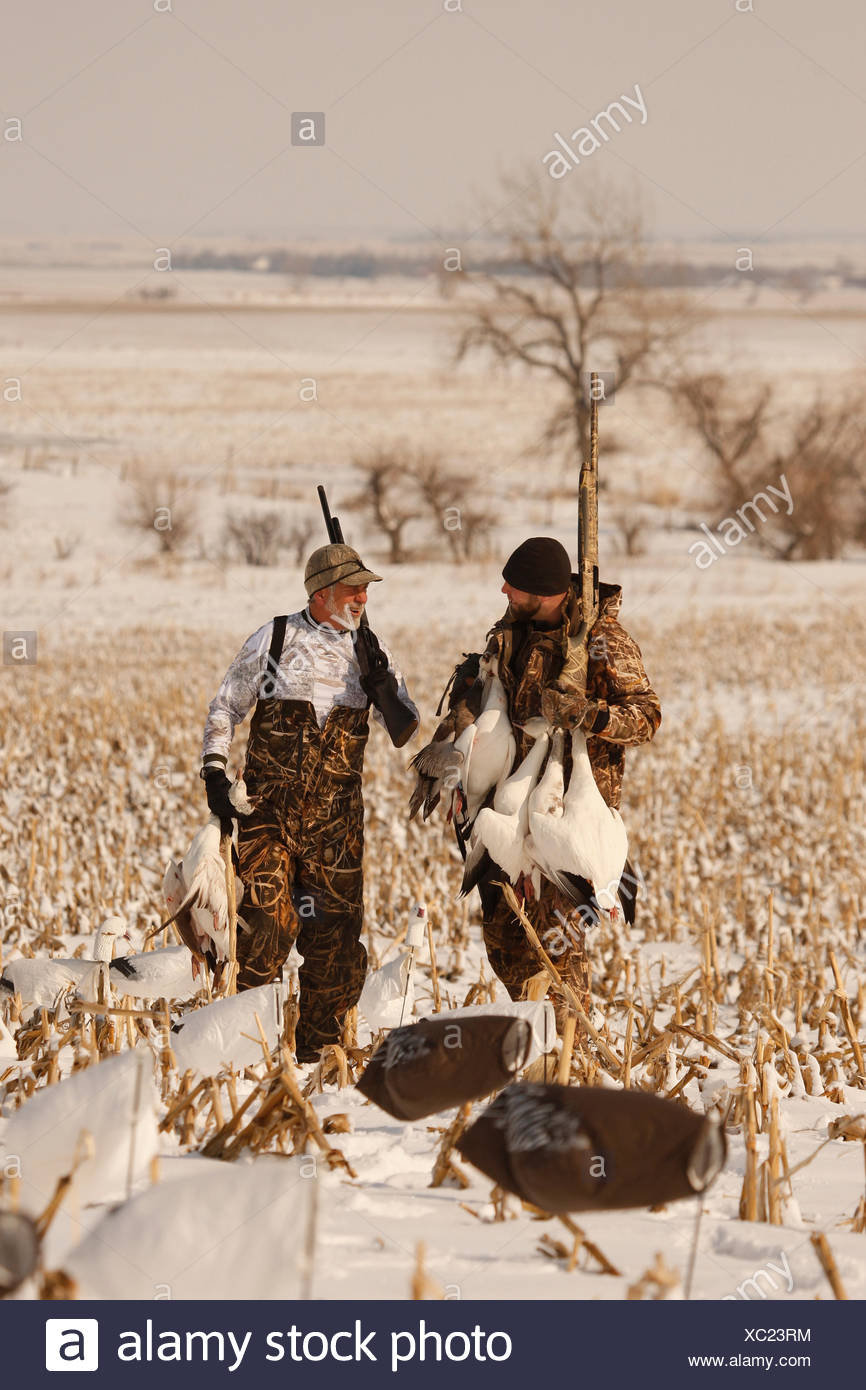 23c2dc190a842 Snow Goose Hunters With Dead Snow Geese Stock Photo: 282788680 - Alamy
