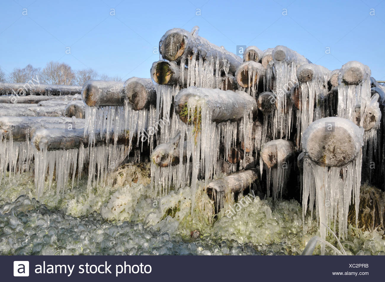 Humidity-controlled timber storage in Winter, Germany, North Rhine-Westphalia - Stock Image