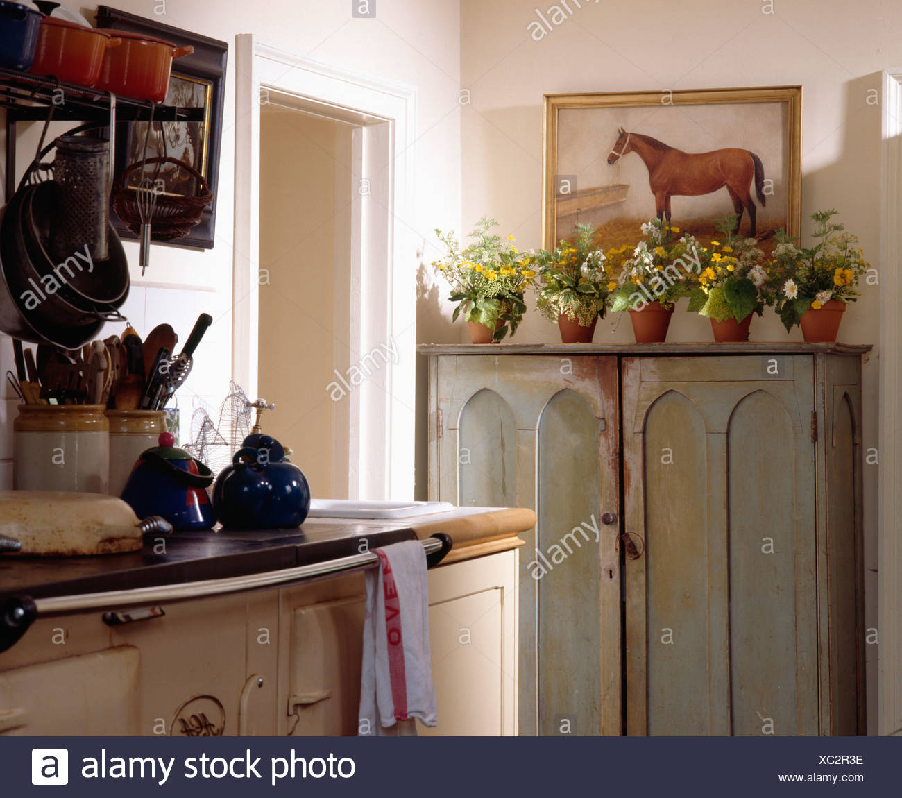 Old cupboard painted grey with row of terracotta pots with flowers in country kitchen - Stock Image