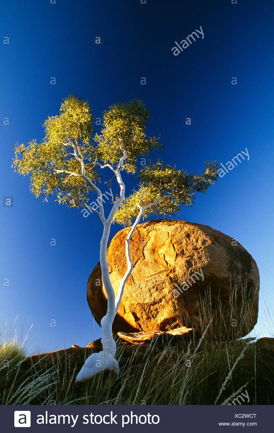 Devils Marbles, Alice Springs region, Australia - Stock Image