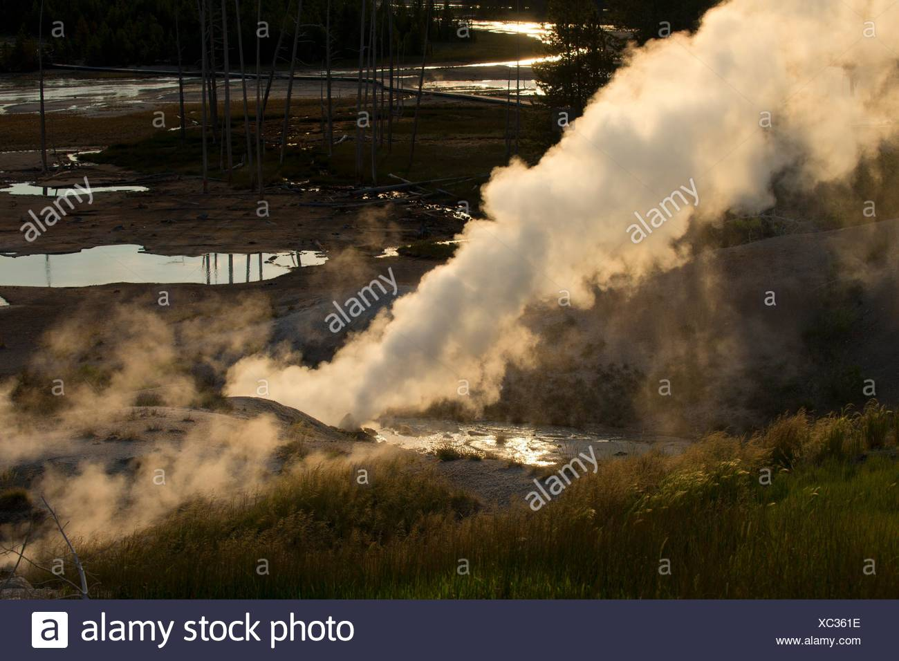 Black Growler Steam Vent at Norris Geyser Basin, Yellowstone National Park, Wyoming. - Stock Image
