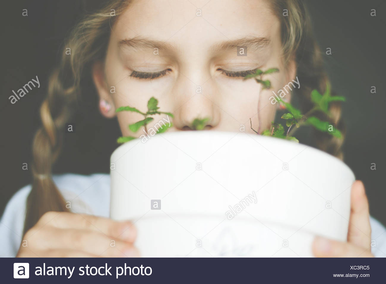 Girl smelling mint plant in a plant pot - Stock Image