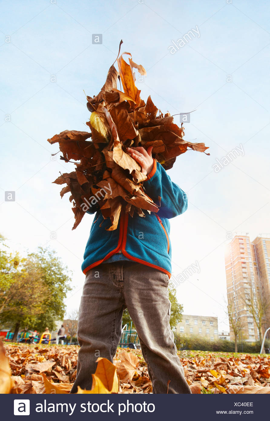 Boy playing with autumn leaves - Stock Image