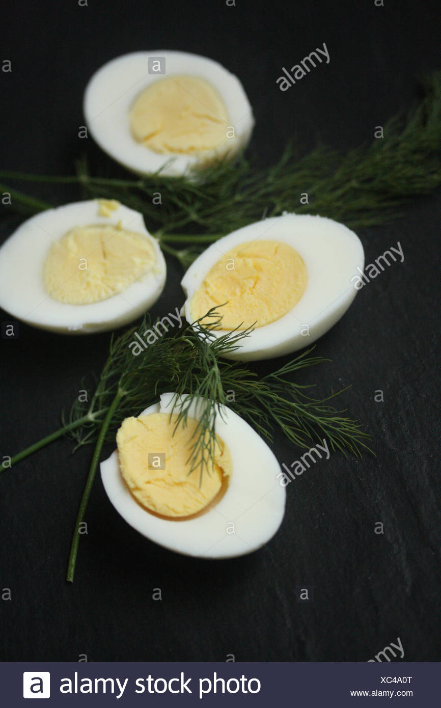Hard boiled eggs with fresh dill - Stock Image