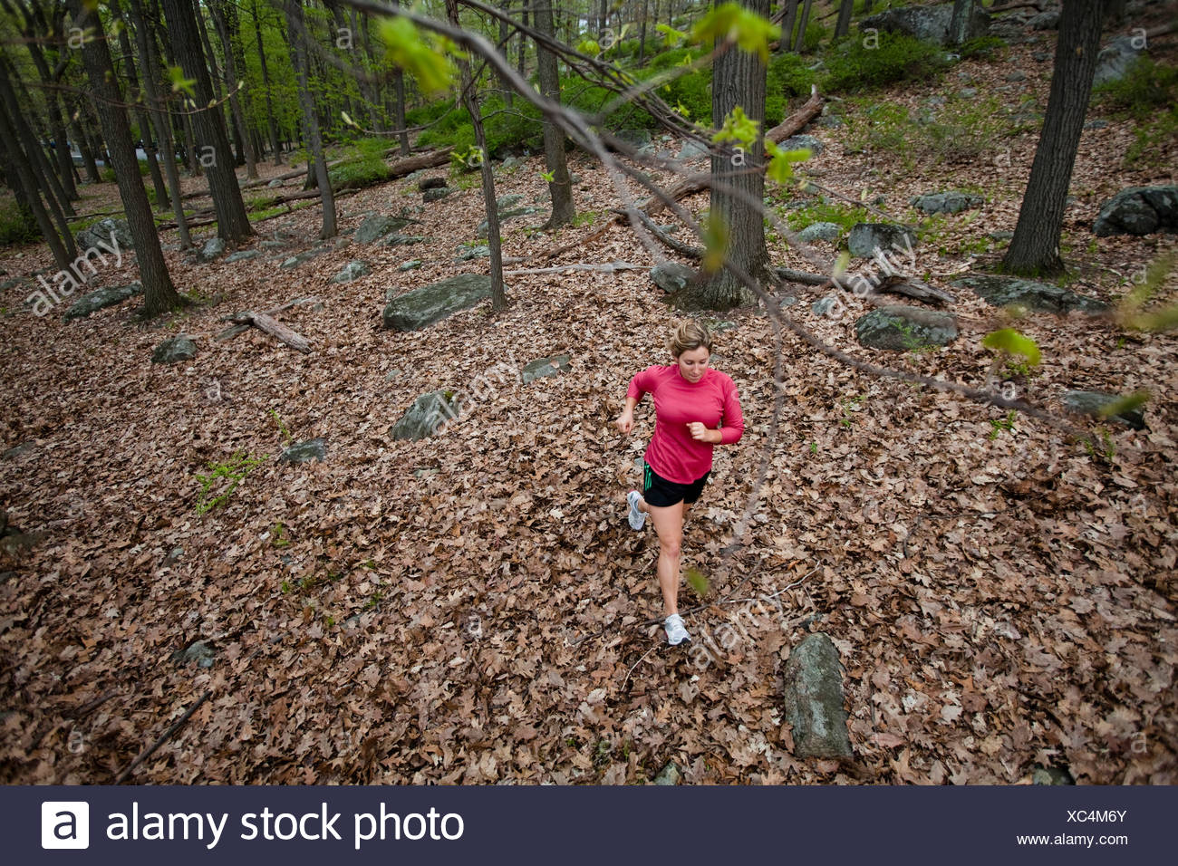 A female runner trail runs at Harriman State Park in Stony Point, New York. - Stock Image