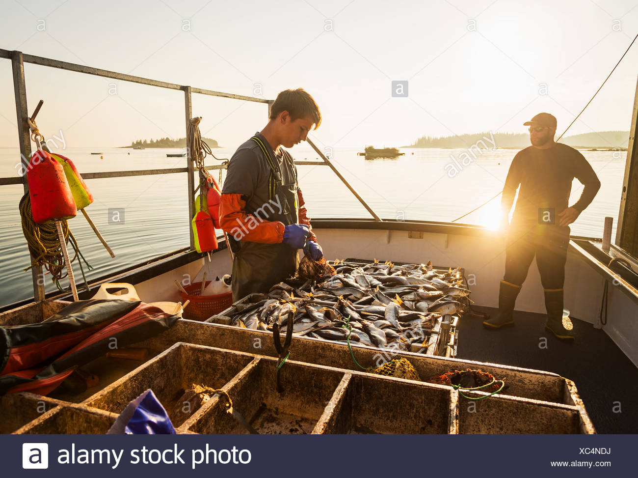 Two fishermen working on boat - Stock Image