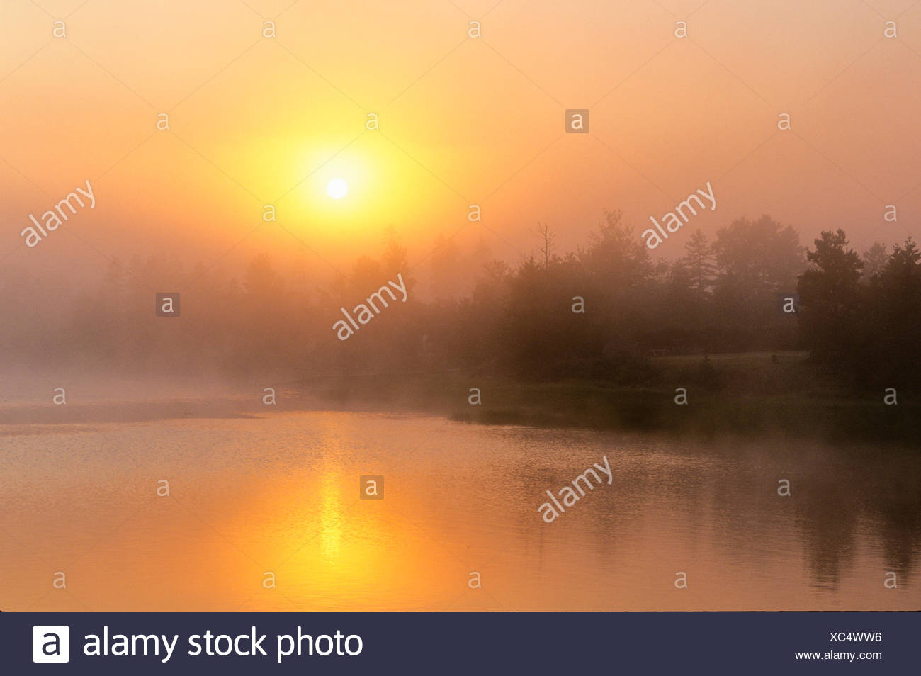 Sunrising through fog, West River, Prince Edward Island, Canada - Stock Image