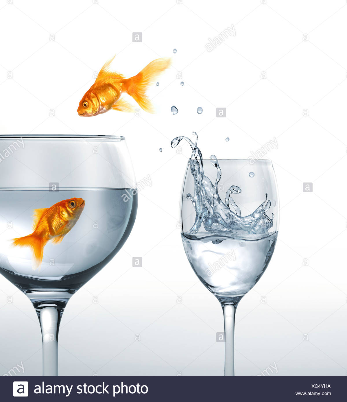 Jumping goldfish artwork - Stock Image