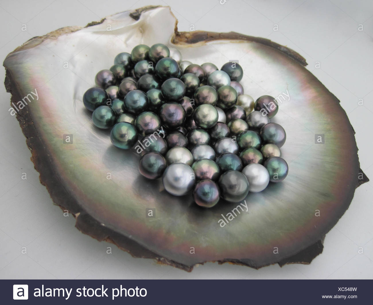 pearl mother of images clutch aherrmannsen best handbags purse on vintage pinterest pearls purses