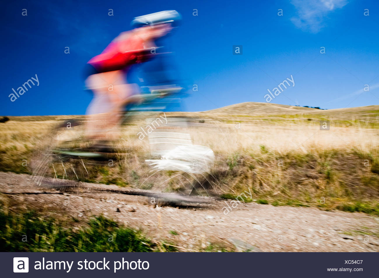 A female mountain biker pedals the trail on Mt. Sentinel, Missoula, Montana. - Stock Image