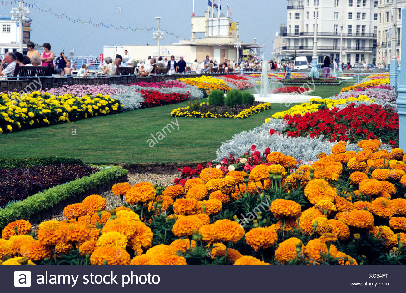 Eastbourne Sussex, seafront flower gardens flowers garden couth coast coastal English resort promenade promenades England UK sea - Stock Image