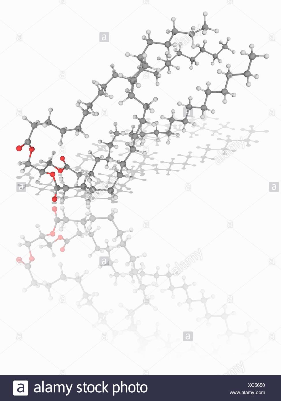 Triglyceride stock photos triglyceride stock images alamy molecular model of the triglyceride organic compound glycerol triarachidate c63 pooptronica Gallery