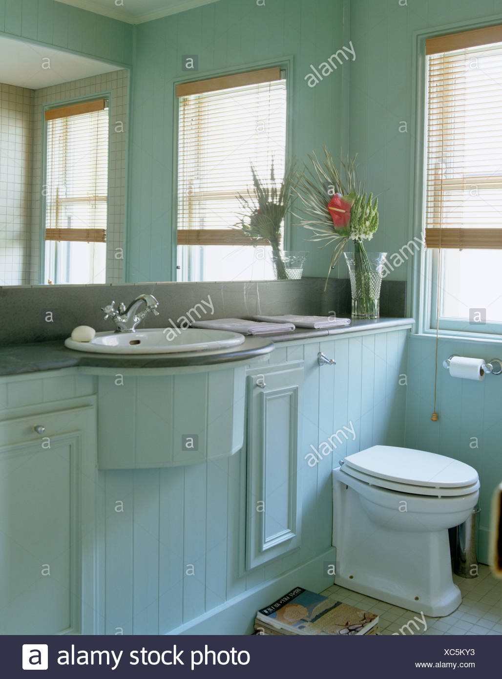 Mirrored Wall Above Basin And Toilet In Tongue Groove Paneled Vanity Unit In Pale Blue Country Bathroom Stock Photo Alamy
