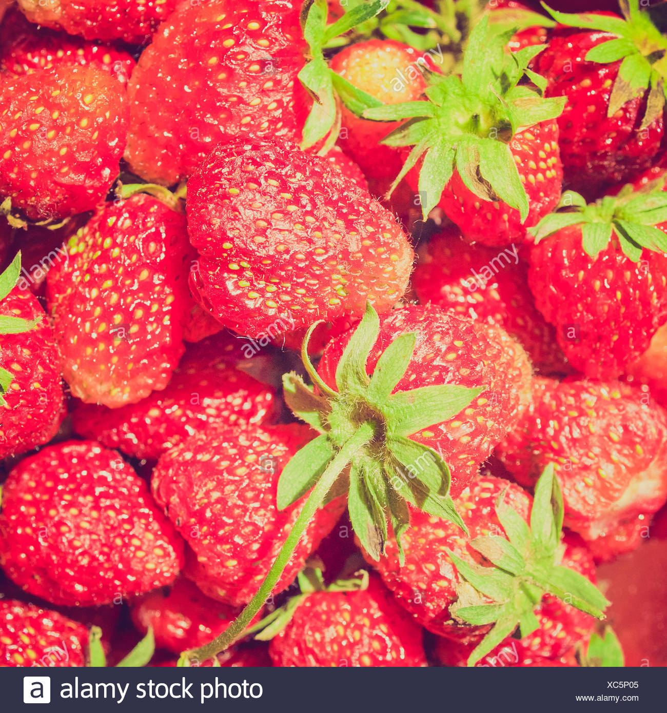 What is useful strawberries 73
