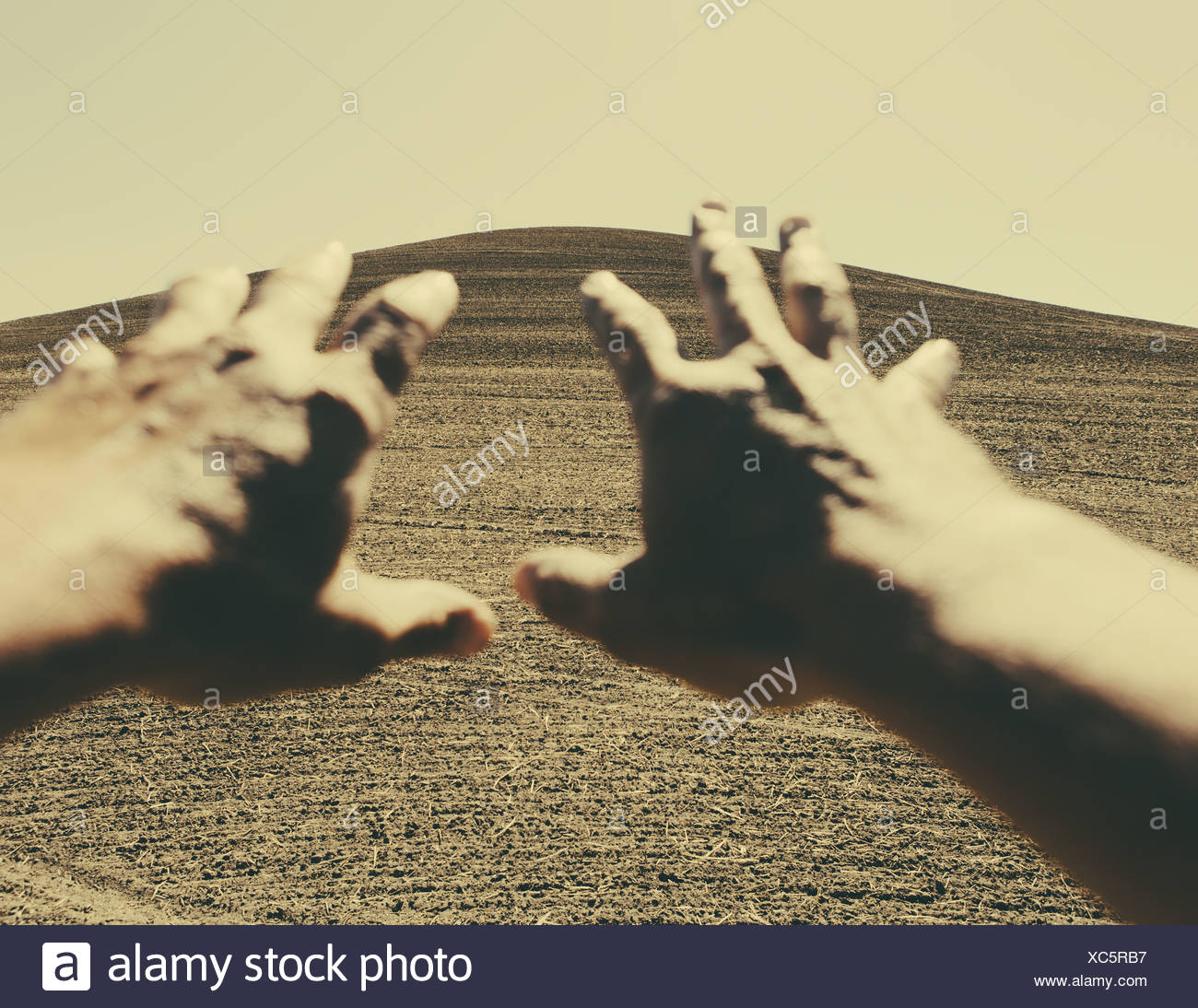 Hands extending reaching out towards ploughed farmland, near Pullman, Washington, USA - Stock Image